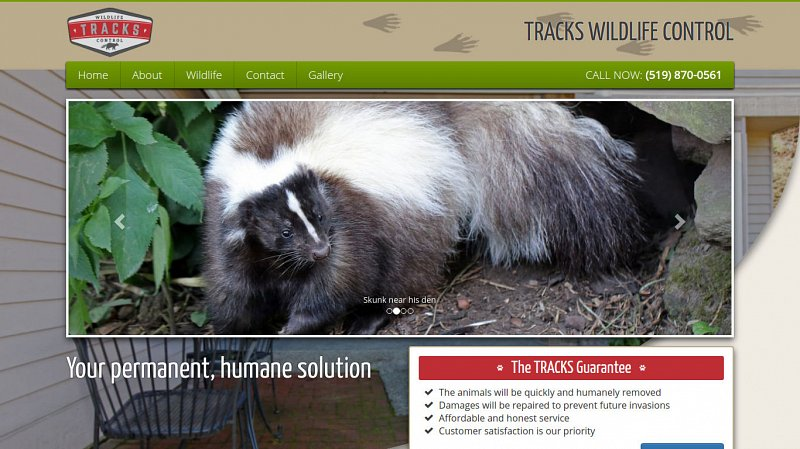 Tracks Wildlife Control